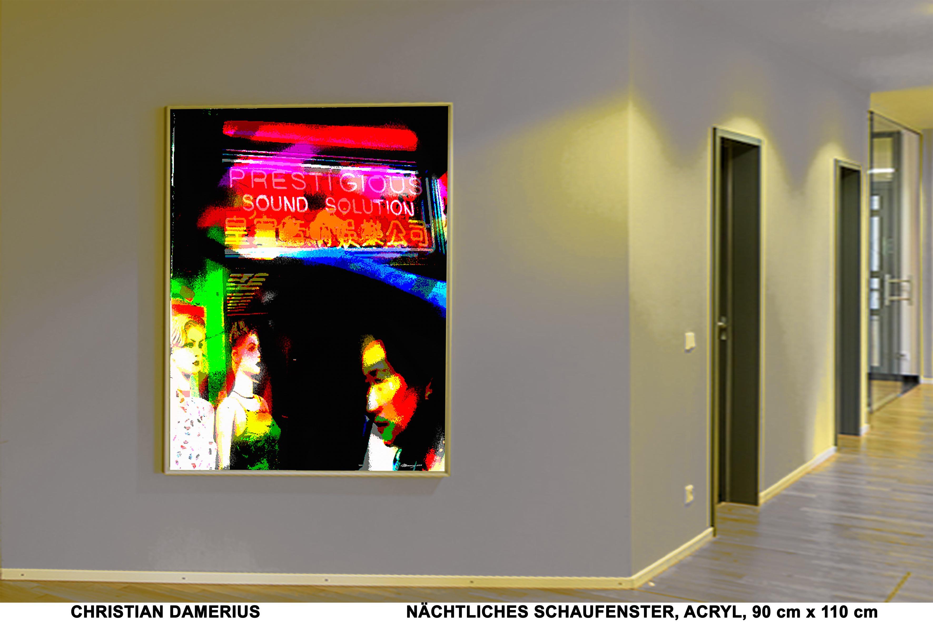 nächtliches schaufenster,christian damerius,nacht,schaufenster,gemälde,bilder,kunstdrucke,moderne malerei,motive,bekannte moderne deutsche maler,